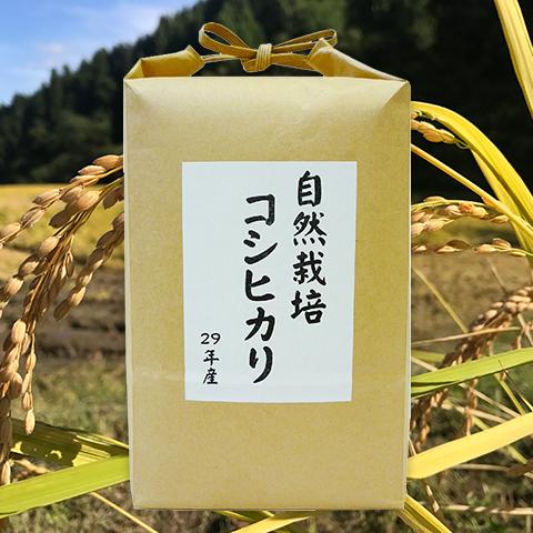 プレゼント:QUOカード(2,000円分)